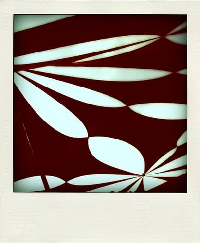 29/365: canopy