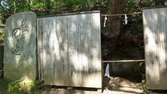 熊野神社市民の森(のの池)(Nonoike at Kumano Shrine Community Woods)