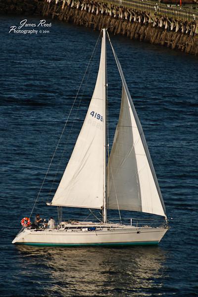 A sailboat sets out alongside the Jewel for a short tour.
