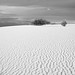 White Sands New Mexico-20.jpg