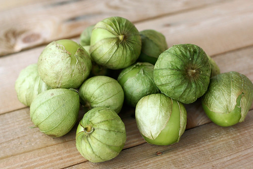Beautiful and fresh tomatillos for the Butternut Squash Enchiladas with Tomatillo Sauce
