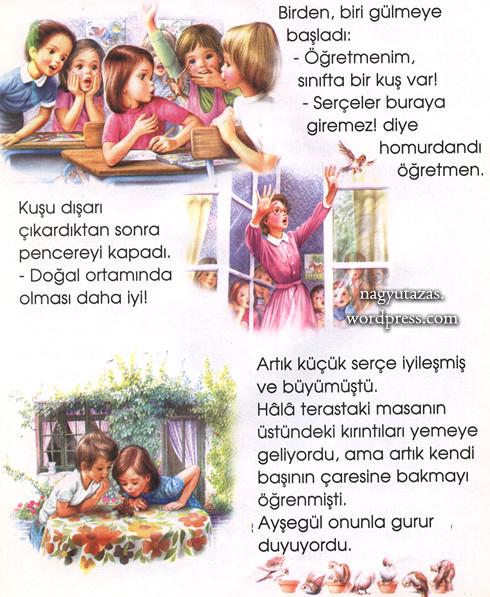 Ayşegül és kis barátja - Török mese
