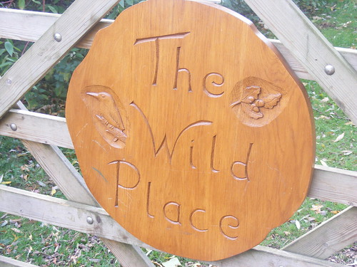 The Wild Place 001