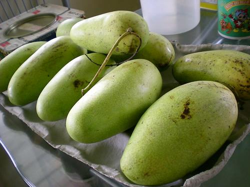Kuala Penyu mangoes