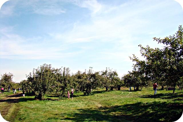 Les Jardins d'Émilie - Rougemont