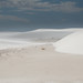White Sands New Mexico-14.jpg
