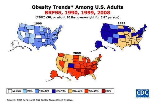 obesity_trends_2008.005