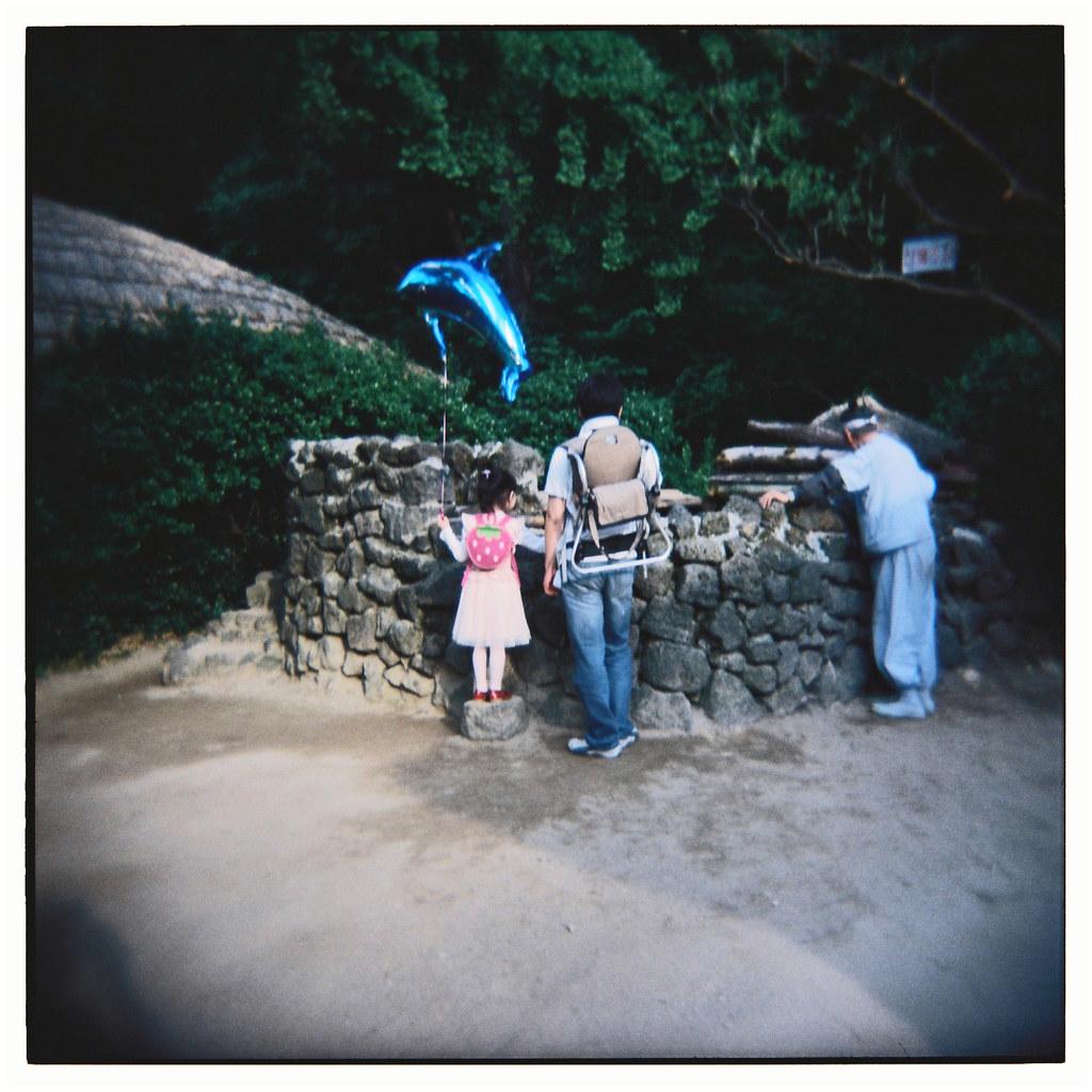 blog: film drop: holga 120