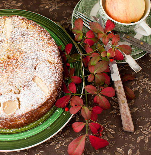 Apple_Torte_Cranberries_2