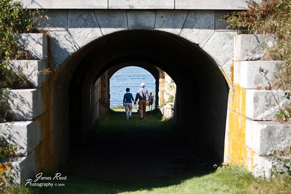 A couple strolls through an impromptu tunnel of love.