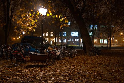 Autumn in Amsterdam (2)