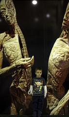Human Bodies Zaragoza