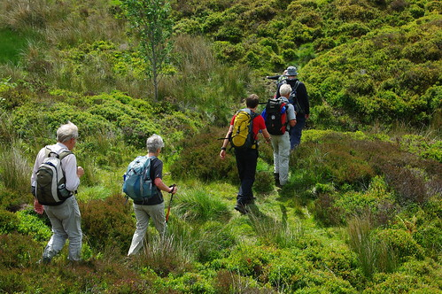 200110619-16_Crossing rough moorland - Maesyrychen Mountain by gary.hadden