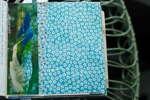 Empty page iris