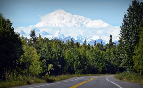 Road to Denali - Mountains - Alaska