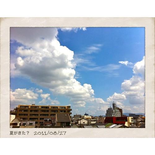 夏がきた? #iphotography #instagram