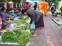 Morning Market, Luang Prabang