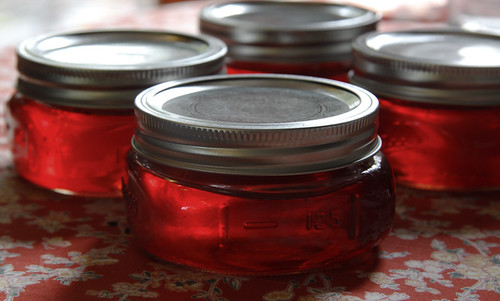 spiced-crabapple-jelly