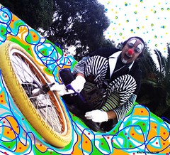 mono-velodromo-