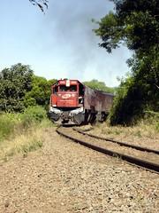 224 Trilha - Estrada de Ferro e Serra do Pinhal - Santa Maria RS_00002