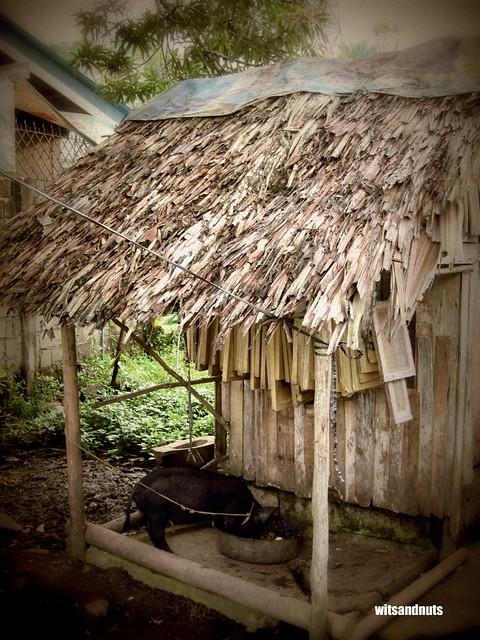 Hinatuan, Surigao del Sur