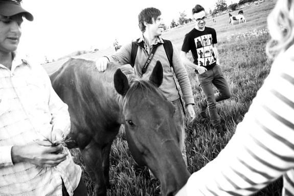 Black Mountain Colorado Dude Ranch petting horses