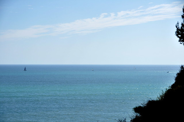 Pacific View from Dana Point, CA