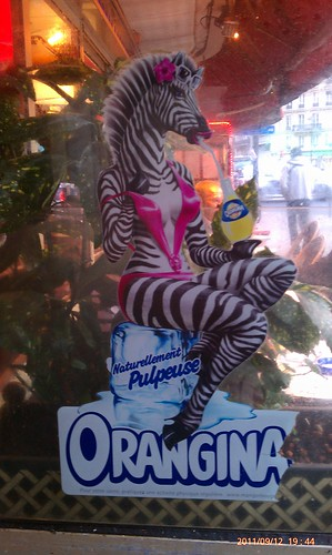 Yeah, so #Paris and Orangina, I don't understand these zebra tiddays you're hawking. Really by trisho.