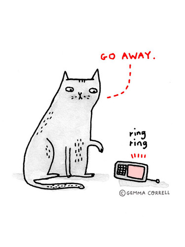 the introverted cat by gemma correll