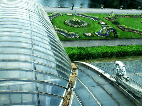 Palm House roof