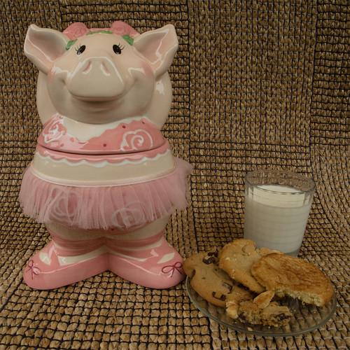Day 224 :: 365 … Ballet Piggy by Echo9er