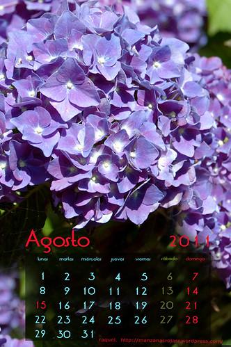 Calendario agosto 2011