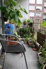 Balkon 28-08