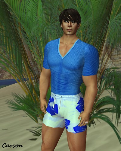 Wilson's Designs - Blue Flowered Terry Shorts and Royal V-Neck Tee  BSP