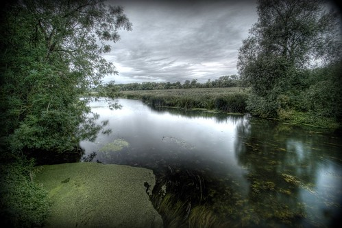 The River - Felmersham