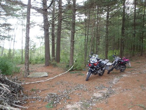 The woods, or why I ride