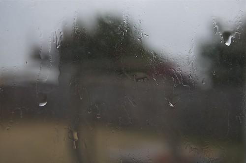 08.24.2011 Rain