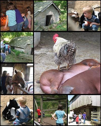 Gorman Farm 1