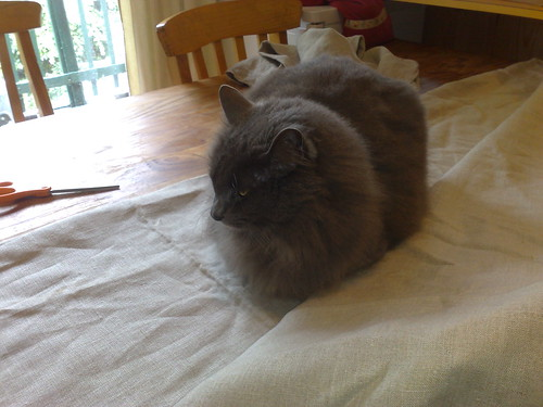 Samantha helping with the sewing