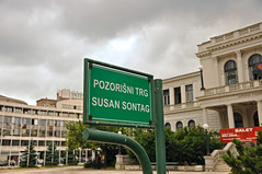 Theater Square of Susan Sontag