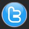 Botón Twitter