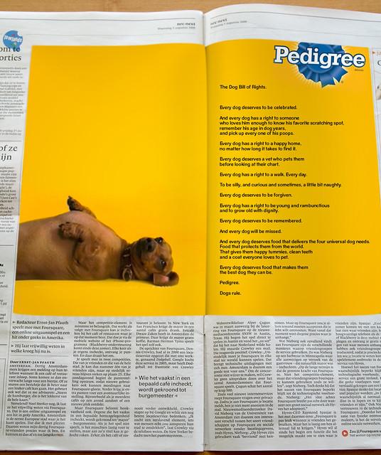 pedigreeBOR_newspaper4