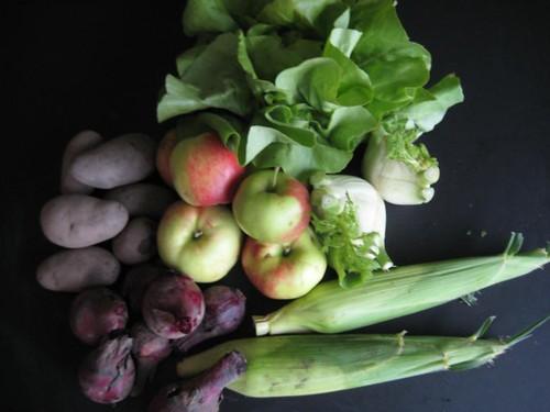 Amelishof organic CSA vegetables week 32, 2011
