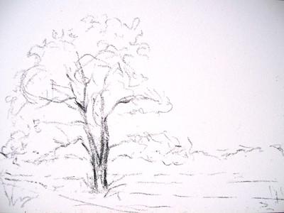 20110918_evidence_autumn_step1