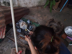 Grilling the fish, Vangmekong, Vientiane