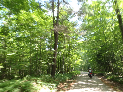 Natchaug State Forest, Connecticut on a Honda Transalp