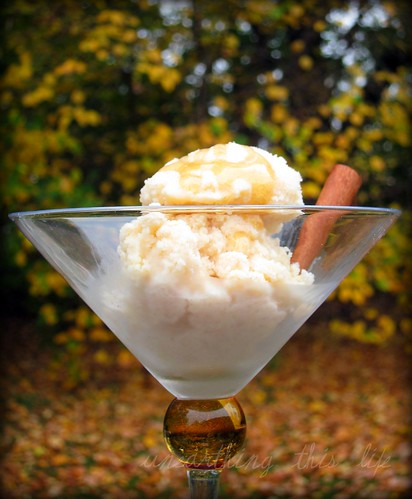 honey cinnamon frozen custard