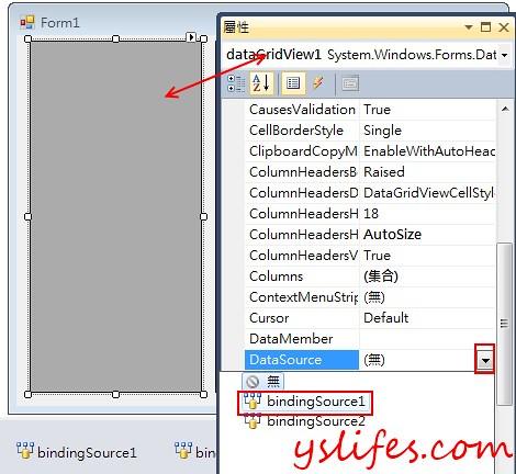 DataGridView binding DataSource