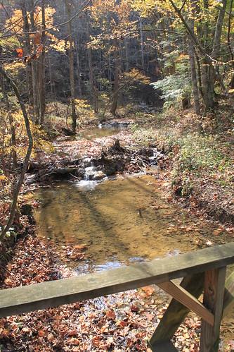 Falls Ridge - October 2011 - Creek