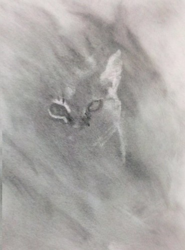 Graphite Powder Experimentation on Watercolor Paper